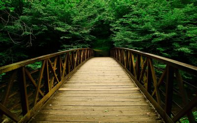 awesome-wooden-bridge-hd-wallpaper