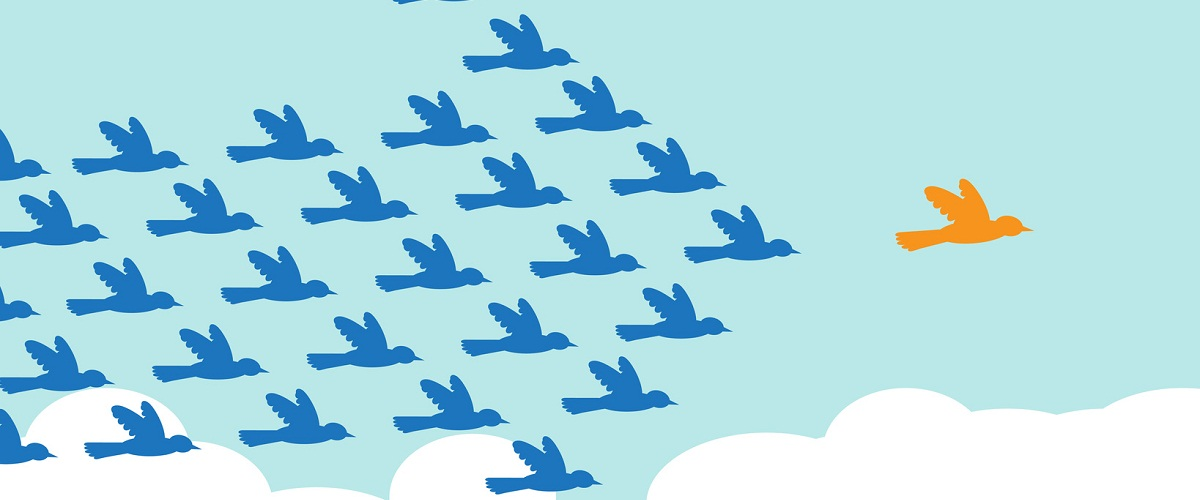 A graphic of a flock of blue birds, with one orange one leading in the front
